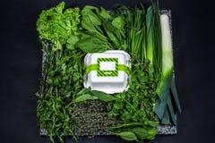 Diversos verdes frescos con lechuga, la menta, el perejil, la cebolla y la caja Fotografía de archivo libre de regalías