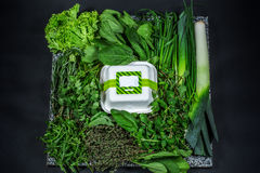 Diversos verdes frescos con lechuga, la menta, el perejil, la cebolla y la caja Imagen de archivo