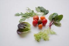 Diversos verdes frondosos y tomates de cereza Imagenes de archivo