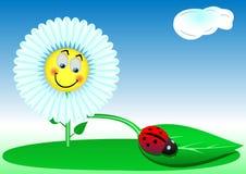 Divertente un fiore e una coccinella Fotografie Stock Libere da Diritti