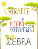 Divertimento africano da zebra do girafa do hipopótamo dos animais Imagem de Stock