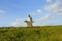 Divertimento con il cane Fotografia Stock