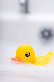 Divertimento de Bathtime Fotografia de Stock
