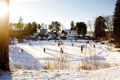 Divertimento de patinagem do inverno Fotos de Stock Royalty Free