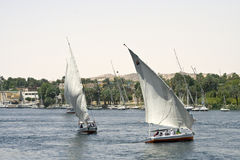 Divertimento del Nilo Fotografia Stock Libera da Diritti