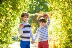 Divertimento della famiglia durante il tempo di raccolto su un'azienda agricola Bambini che giocano in autunno fotografie stock