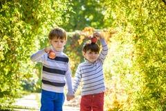Divertimento della famiglia durante il tempo di raccolto su un'azienda agricola Bambini che giocano nel giardino di autunno fotografia stock libera da diritti