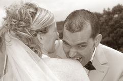 Divertimento di cerimonia nuziale Fotografia Stock