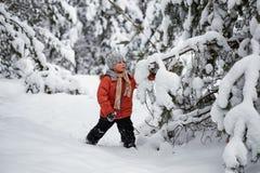 Divertimento di inverno il ragazzo da solo vaga attraverso la foresta nevosa dell'inverno Fotografie Stock Libere da Diritti