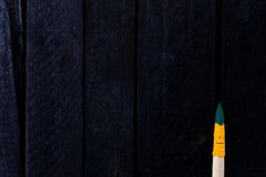 Divertimento di sorriso della spazzola e felice colorati Fotografia Stock Libera da Diritti
