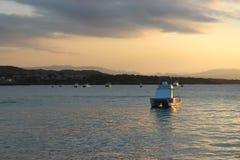 Divertimento di tramonto sulla spiaggia fotografia stock libera da diritti
