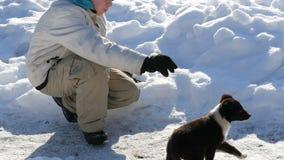 Divertimento do adolescente do menino que joga com um cão de cachorrinho no inverno na neve video estoque