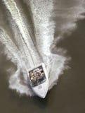 Divertimento do barco de motor no sol Fotografia de Stock Royalty Free