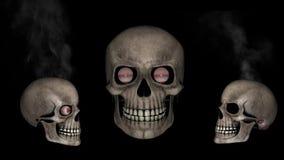 Divertimento do crânio ilustração royalty free
