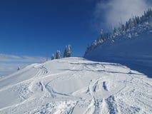 Divertimento do esqui em cumes do francês das montanhas Fotografia de Stock