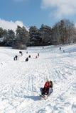Divertimento do inverno Fotos de Stock