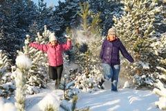 Divertimento do inverno na floresta Imagens de Stock