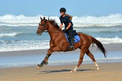 Divertimento do passeio da praia Imagens de Stock Royalty Free