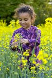 Divertimento entre as flores Fotografia de Stock