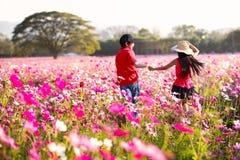 Divertimento feliz das crianças no campo de flores do cosmos Fotos de Stock