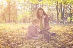 Divertimento nas folhas caídas Mãe e filha foto de stock royalty free