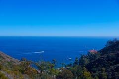 Divertimento sull'isola di Santa Catalina Fotografie Stock Libere da Diritti