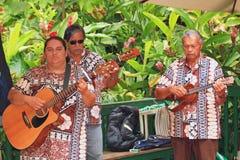 Divertissement d'excursion de bateau de fleuve de Wailua Photo stock