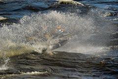 Dives Man on jet-ski Royalty Free Stock Photo