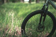 Diviértase la bici en la hierba en el parque Fotos de archivo libres de regalías