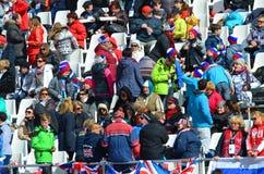Diviértase las diversiones en los juegos de Paralympic del invierno en Sochi Imágenes de archivo libres de regalías