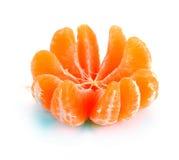 Divide clementinas en segmentos Fotografía de archivo libre de regalías