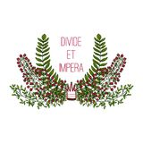 Divide et empera, postcard. With branches and berries Stock Photo