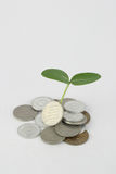 Dividend. Its dividene to growfor your assets Stock Images