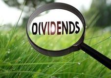 dividenden stock fotografie