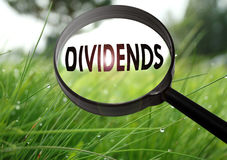 Dividends. Magnifying glass with the word dividends on grass background. Selective focus stock photography