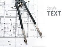 dividers architektoniczny paln Obraz Royalty Free