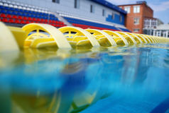 Dividers of paths in the big swimming pool Stock Image