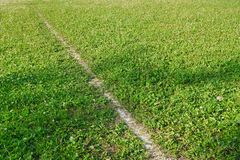 The dividing line marking a green football field background. Game of football royalty free stock photos