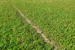 The dividing line marking a green football field background. Game of football royalty free stock photo