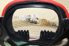 Divind goggles, shells, sand Stock Photos