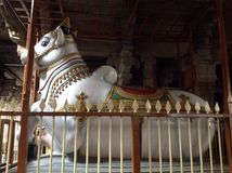 Divine Bull. Big Bull statue in the shrine of God Shiva royalty free stock image