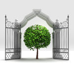 Divine natural tree in heavenly gate Stock Photo