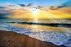 Free Divine Soul Journey Baptism Stock Image - 184148501