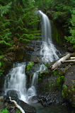 Divine waterfall in a forest. A divine soul shaped waterfall in a deep forest stock photography