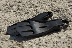 Diving. A pair of black scuba diving fins laying on the concrete by the shore Stock Photography