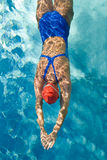Diving. Athletic swimmer is diving in a swimming pool Royalty Free Stock Images