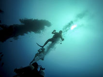 Diving in Barbados, Caribbean. Into the deep blue ocean Royalty Free Stock Photography