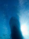 Diving boat from below the surface. Diving boat afloat, photo taken from below the surface. Anchor line and some bubbles from the divers Royalty Free Stock Photos