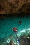 Diving in a cenote, Mexico Royalty Free Stock Photo