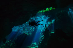 Diving in the cenote underwater cave, Quintana roo Stock Images